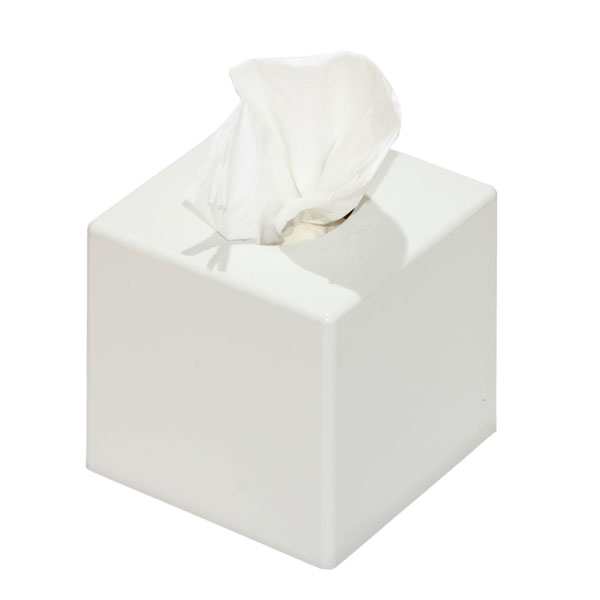 White Tissue Box Cover...